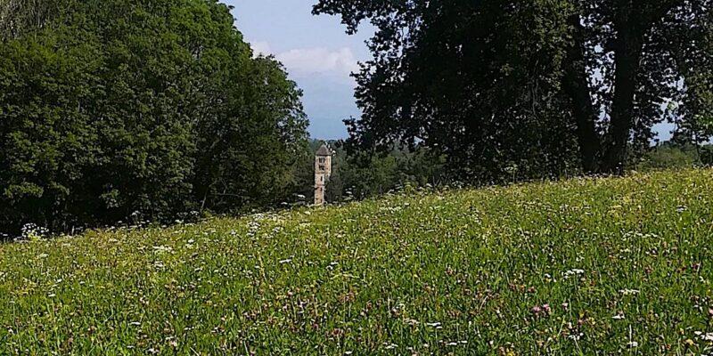 campanile_domenica_29_agosto