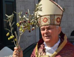 vescovo_palme